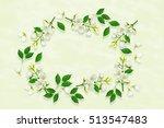 twig bright white jasmine... | Shutterstock . vector #513547483