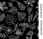 hand drawn engraving style... | Shutterstock .eps vector #513610453