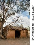 Small photo of Vertical photo on color of an old and ruined adobe house beside a tree