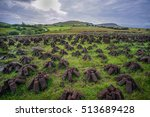 turf being harvested for fuel... | Shutterstock . vector #513689428