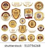 vector medieval golden shields... | Shutterstock .eps vector #513756268