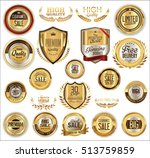vector medieval golden shields... | Shutterstock .eps vector #513759859