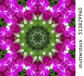 kaleidoscope with natural... | Shutterstock . vector #513829960