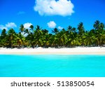 tropical beach in caribbean sea ... | Shutterstock . vector #513850054