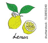 lemon and sliced piece  hand... | Shutterstock .eps vector #513850240
