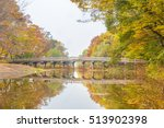 colorful autumn scene in the... | Shutterstock . vector #513902398
