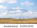 Mount Kilimanjaro  Tanzania. ...