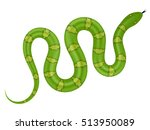 green snake vector illustration.... | Shutterstock .eps vector #513950089