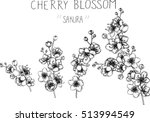 drawing flowers. cherry blossom ... | Shutterstock .eps vector #513994549