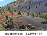 Colorful, tree-dotted volcanic landscape at Sunset Crater Volcano National Monument in Arizona.