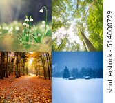 four seasons of year    winter  ... | Shutterstock . vector #514000729