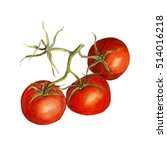 three tomatoes on a branch.... | Shutterstock . vector #514016218