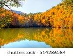 Stock photo autumn landscape in seven lakes yedigoller park bolu turkey 514286584