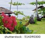 beach flower  | Shutterstock . vector #514390300