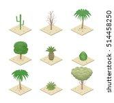 Isometric View Desert Plants....