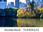 Central Park In The Autumn  New ...