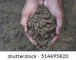 hand with plant | Shutterstock . vector #514695820