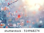 winter nature background.... | Shutterstock . vector #514968274