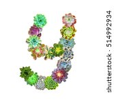 succulent letter y