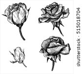 vintage vector floral set of... | Shutterstock .eps vector #515018704