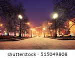 Night Winter Landscape In...