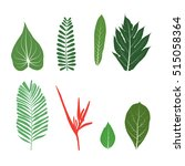 vector tropical set of... | Shutterstock .eps vector #515058364