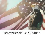 american bald eagle flag... | Shutterstock . vector #515073844