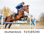 Stock photo young horseman on show jumping competition rider with sorrel horse jump over the hurdle 515185240