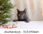 Whiskered Cat At A Table With...