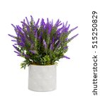 Lavender In Vase Isolated On...