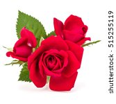 Stock photo red rose flower bouquet isolated on white background cutout 515255119