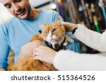 Stock photo young man and woman taking their persian cat to the pet shop they buying some pet accessories and 515364526