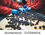 people at work. unrecognizable... | Shutterstock . vector #515364616