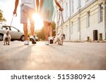 Stock photo cropped image of a friendly couple walking dogs together on the city street 515380924