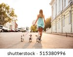 Stock photo back view of a young woman walking her dogs on the city streets 515380996