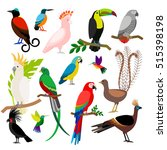 exotic tropical birds isolated... | Shutterstock .eps vector #515398198