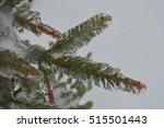 winter tree in the ice   Shutterstock . vector #515501443