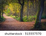 split in a path through... | Shutterstock . vector #515557570