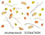 Foliage Isolated On White...