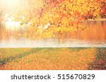 bright autumn background.... | Shutterstock . vector #515670829