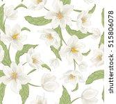 blooming hellebore flowers... | Shutterstock .eps vector #515806078