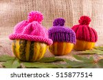 Three Small Ornamental Pumpkin...