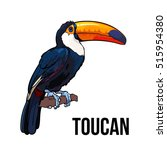 hand drawn toucan seating on a... | Shutterstock .eps vector #515954380