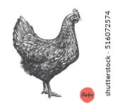 chicken hand drawn illustration.... | Shutterstock .eps vector #516072574