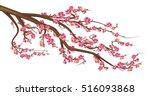 cherry blossom.  sakura branch... | Shutterstock .eps vector #516093868