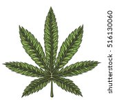 Cannabis Leaf. Hand Drawn...