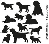 Stock vector big set of silhouettes of dogs and puppies vector 516130909
