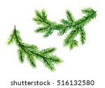 green pine tree brunches.... | Shutterstock . vector #516132580