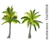 vector illustration on a... | Shutterstock .eps vector #516250018