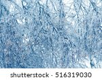 frozen in the ice tree branches.... | Shutterstock . vector #516319030
